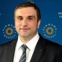 პლატონ კალმახელიძე - კოალიცია ქართული ოცნება
