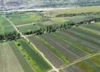 სასოფლო-სამეურნეო მიწის მართვას სპეციალური დეპარტამენტი განახორციელებს